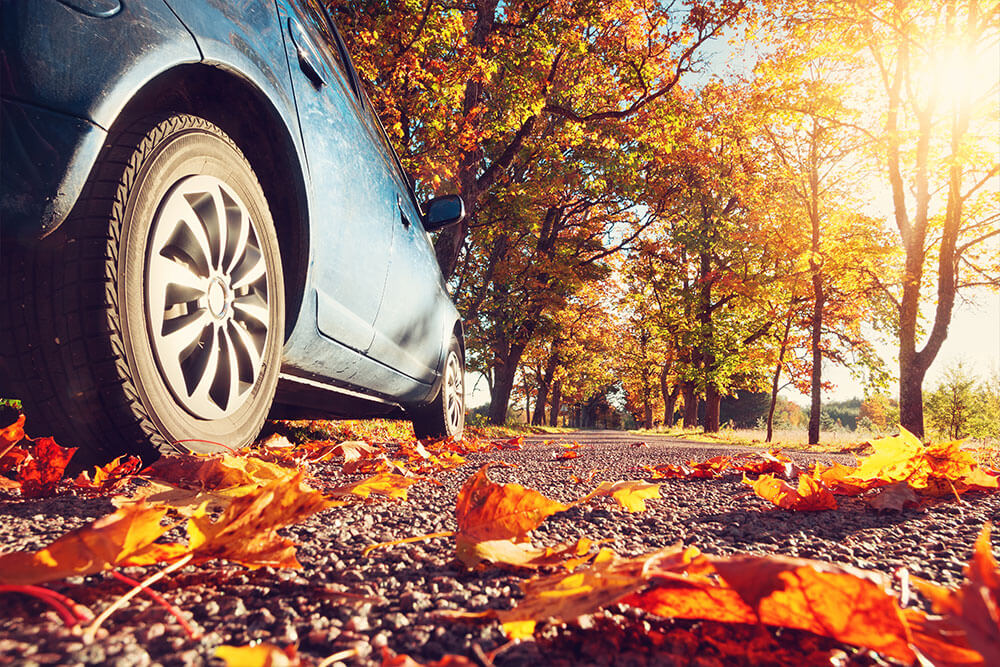 Three Fall Care Tips For Your Japanese Car